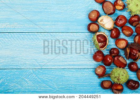 chestnut on blue wooden background with copy space for your text. Top view.