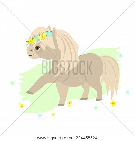 Vector flat illustration. Cute Shetland pony stalion.