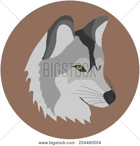 A wolf a wolf's head. Flat design vector illustration vector.