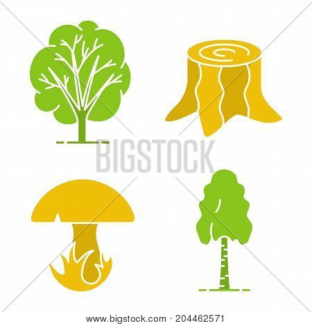 Forestry glyph color icon set. Birch tree, stump, mushroom in grass. Silhouette symbols on white backgrounds. Negative space. Vector illustrations