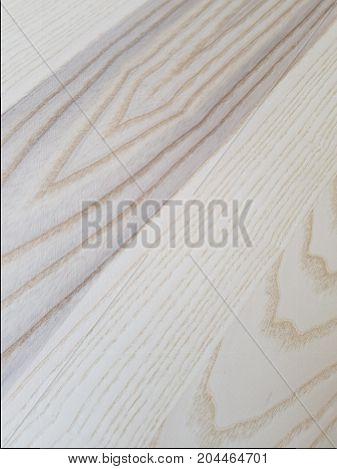 Light Color Fresh Cut Wood Texture Background