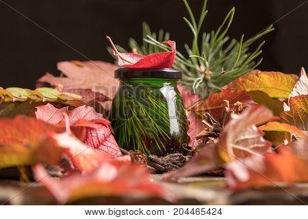 Unusual Green Honey On A Background Of Autumn Bright Foliage. Fresh Delicious Cedar Medicinal Honey.