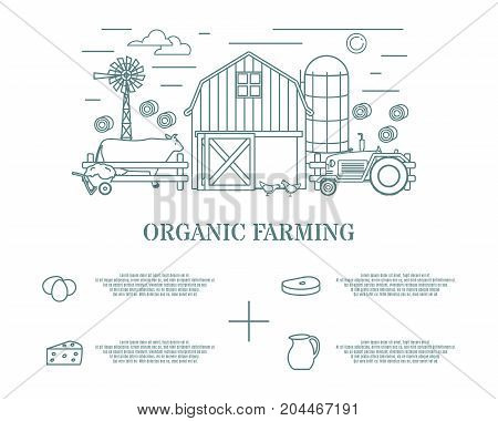 Organic farming concept vector illustration with infographics in modern thin line style for web banners, posters, flyers and printed materials.