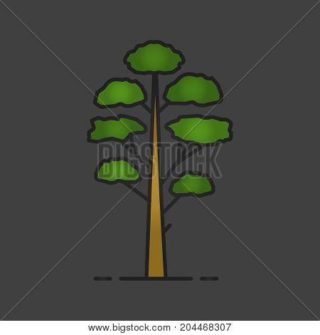 Pine tree color icon. Conifers. Forestry. Forest tree. Isolated vector illustration