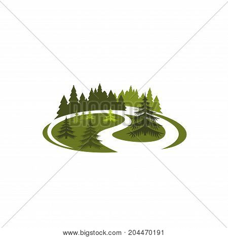 Park green nature icon of forest tree landscape. Park, forest or garden symbol with grass lawn or woodland meadow, pine and fir tree for eco park, outdoor nature and summer garden design