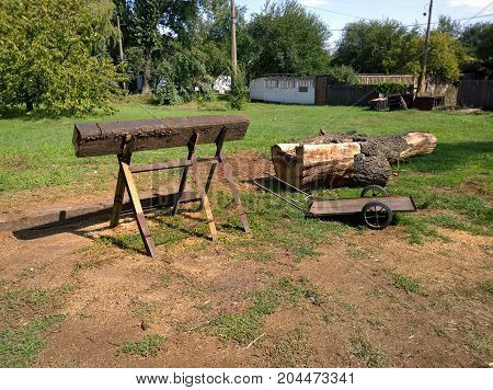 Sleepers on saw-bones for sawing and trunk of wood prepared for sawing in autumn
