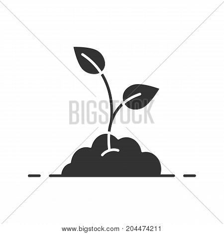 Growing sprout glyph icon. Environment. Ecology silhouette symbol. Gardening. Negative space. Vector isolated illustration