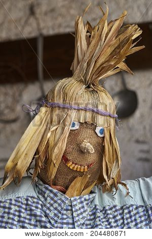 funny scarecrow in the farm on halloween