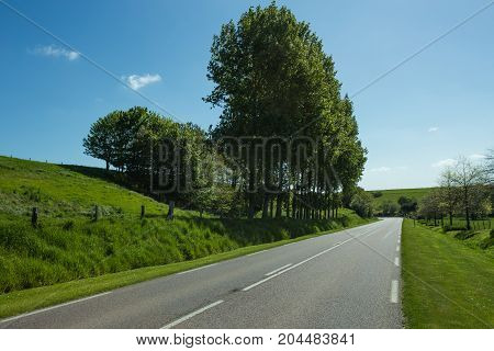 Empty Asphalt Country Road Passing Through Green Agricultural Fields And Forests. Countryside Landsc