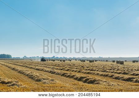 Yellow Wheat Field With Straw Bales During Harvesting On A Sunny Day In Normandy, France. Country La