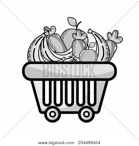 grayscale shopping basket with delicious fruits and vegetables vector illustration