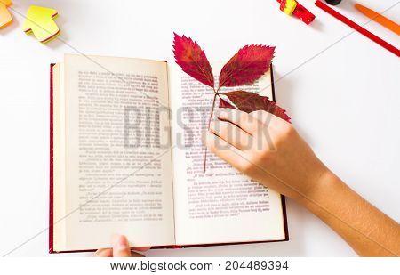 Girl Using An Autumn Leaf As Book Marker