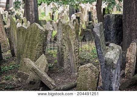 Jewish cemetery in Prague Czech republic. Memorial place. Many graves. Historical object.
