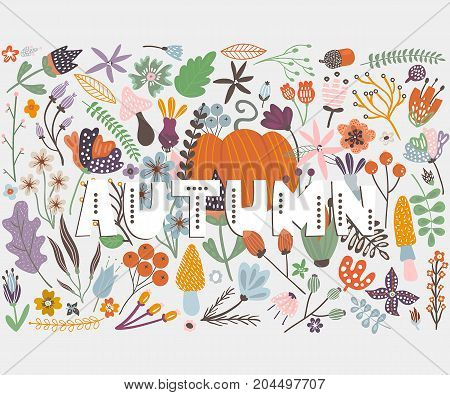 Autumn card with pumpkin flowers leaves and branches. Vector illustration with text Autumn.