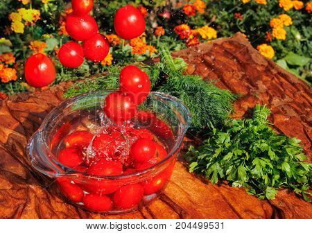 fresh tomatoes falling in pure water side view