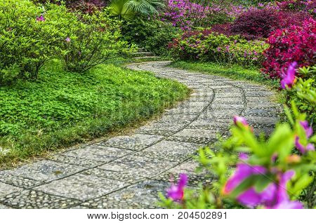 The beautiful pathway in garden in spring