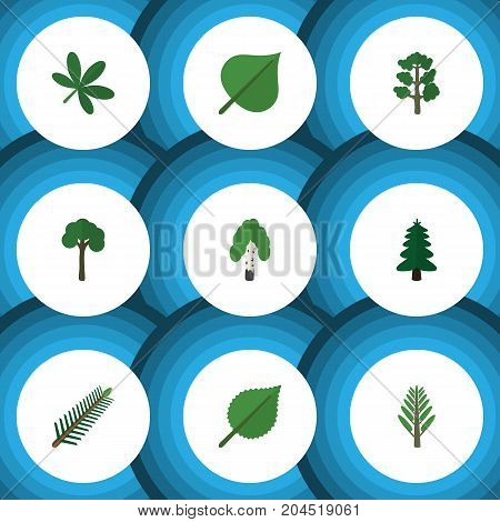 Flat Icon Ecology Set Of Linden, Maple, Evergreen And Other Vector Objects