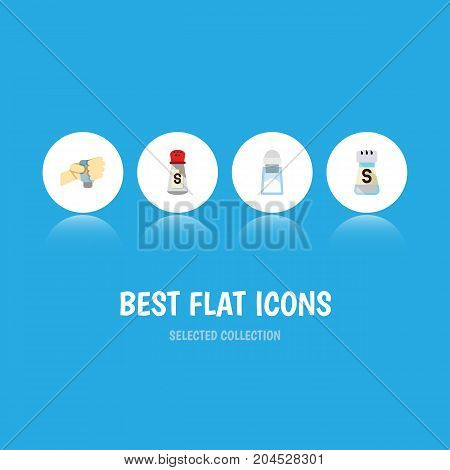 Flat Icon Salt Set Of Sodium, Flavor, Saltshaker And Other Vector Objects