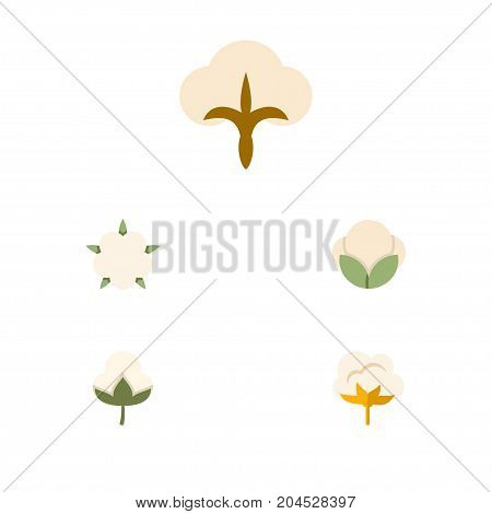 Flat Icon Fiber Set Of Fluffy, Cotton, Fiber And Other Vector Objects