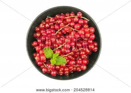 Redcurrants in bowl on a white background