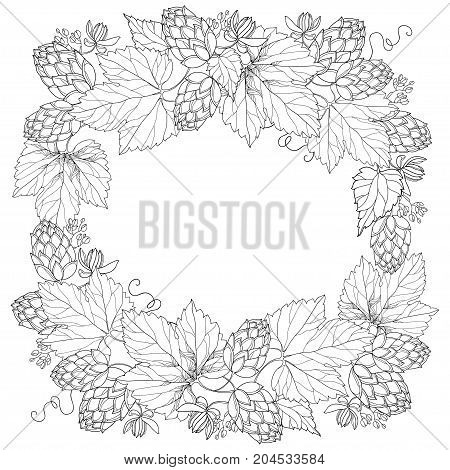 Vector frame with ornate beer Hops or Humulus. Cones and leaves in black isolated on white. Outline Hops for beer and brewery. Herbal elements in contour style for decor and coloring book.