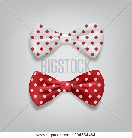 Vector bow ties polka dots isolated on gray background.