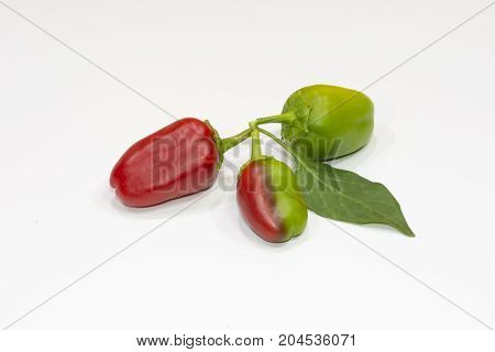 three peppers, one red, one green and one red and green
