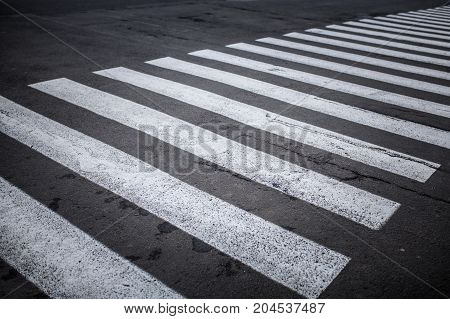 Nobody On Crosswalk In Black And White Crosswalk
