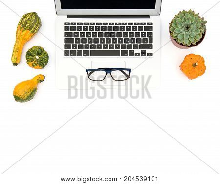 Laptop succulent plants and autumn pumpkins on white background. Office workplace. Flat lay mock up