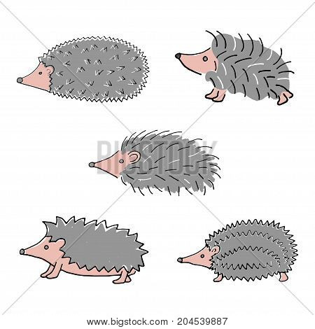Hedgehog hand drawn isolated on white background. Stock vector illustration of a cute animal for seasonal greeting cards, autumn decoration in retro style.
