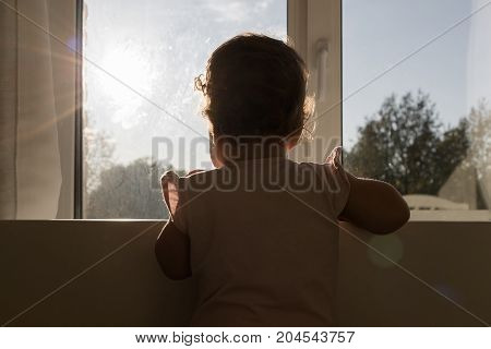 little child by the window on a sunny day