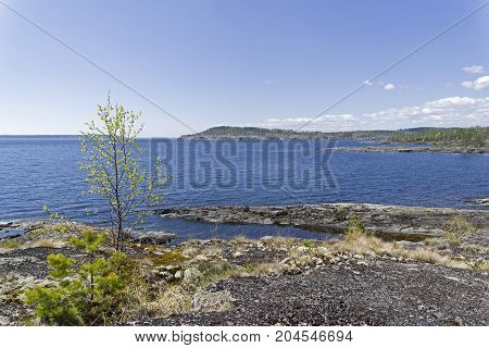 The Stony Shore Of The Ladoga Lake