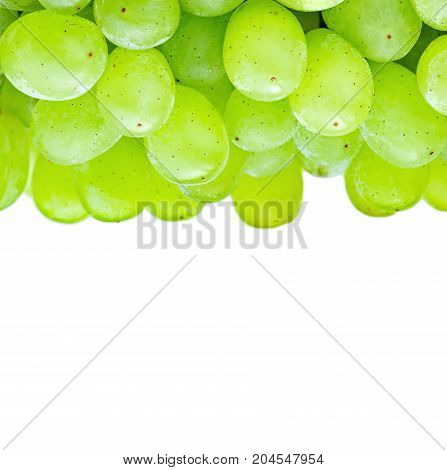 Very fresh green grapes on white background.