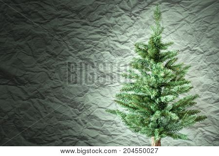 Crumpled Paper Background WIth Copy Space For Advertisement. Spotlight On Christmas Tree Or Fir Tree In Front Of Textured Background.