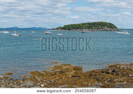Looking out from the shore Bar Harbor Mount Desert Island Maine
