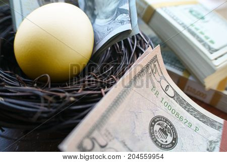 Financial Nest Egg With Stacks Of Money
