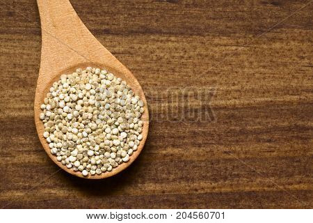 Raw organic white quinoa (lat. Chenopodium quinoa) grains on small wooden spoon photographed overhead on dark wood with natural light