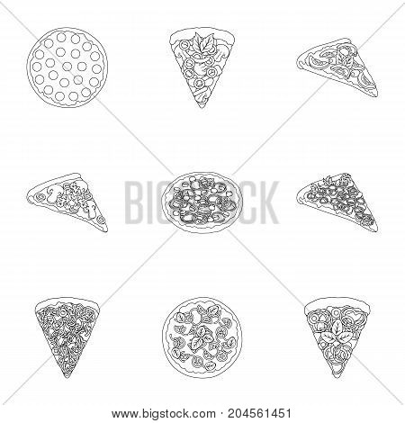 Pizza, slice with meat, cheese and other filling. Different pizza set collection icons in outline style vector symbol stock illustration .