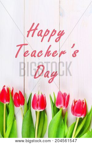 Happy Teachers Day With Tulip Flower, Message For Teacher In Special Day Of Education, Tulip Bouquet