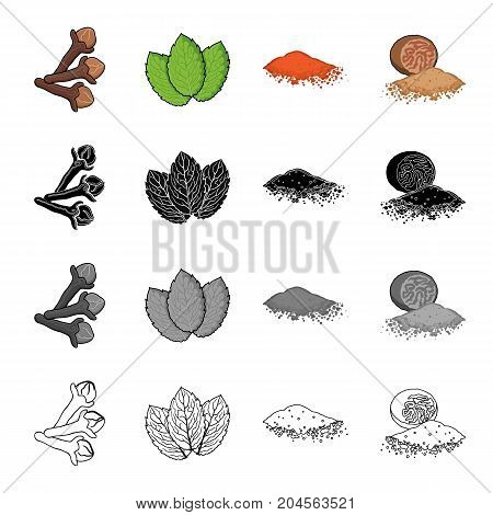 Sprig of allspice, mint grass, spicy paprika, nutmeg. Grass and spice set collection icons in cartoon black monochrome outline style vector symbol stock illustration .