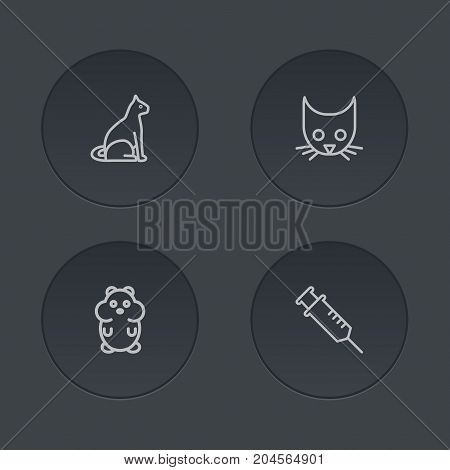 Collection Of Hamster, Vaccination, Head And Other Elements.  Set Of 4 Animals Outline Icons Set.