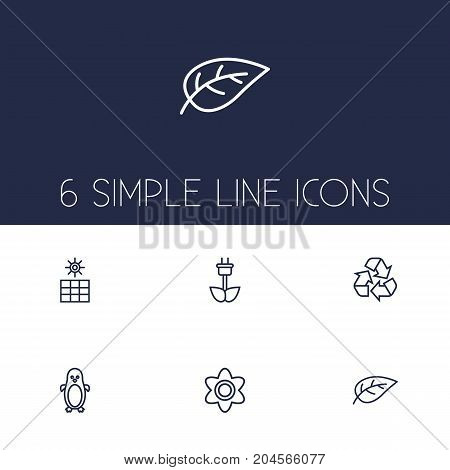 Collection Of Flower, Sun Power, Eco Energy And Other Elements.  Set Of 6 Bio Outline Icons Set.