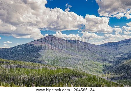 Valley in Wyoming's Yellowstone National Park Wilderness