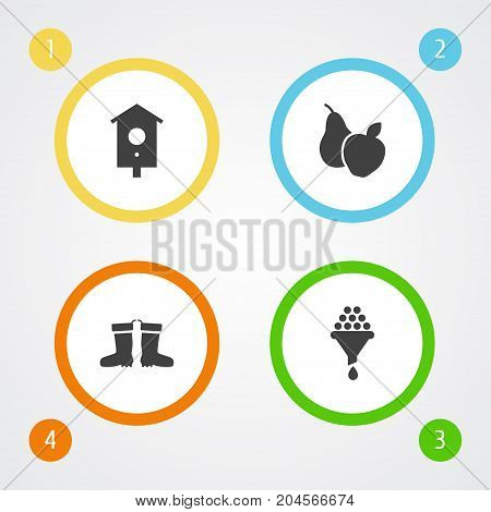 Collection Of Filter, Nesting Box, Fruit And Other Elements.  Set Of 4 Horticulture Icons Set.