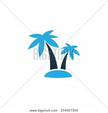 Premium Quality Isolated Tree Element In Trendy Style.  Palms Colorful Icon Symbol.
