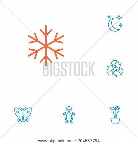 Collection Of Moon With Star, Penguin, Plant And Other Elements.  Set Of 6 Nature Outline Icons Set.