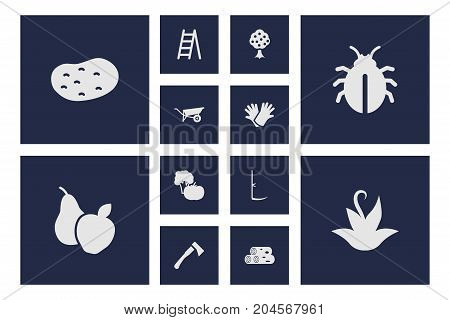 Collection Of Plant, Staircase, Cutter And Other Elements.  Set Of 12 Household Icons Set.