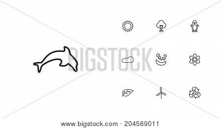 Collection Of Wood, Dolphin, Electric Mill And Other Elements.  Set Of 10 Bio Outline Icons Set.