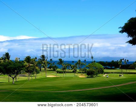 Beautiful Tropical Golf Course in Hawaii-Scene of the Golf Course including Lush Green Fairways, Palm Trees, Sand Bunkers, and the Pacific Ocean