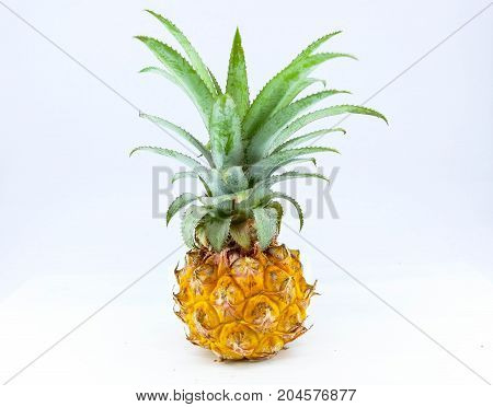 Thai fruit - Pineapple with sour taste mixed with sweet alternate.